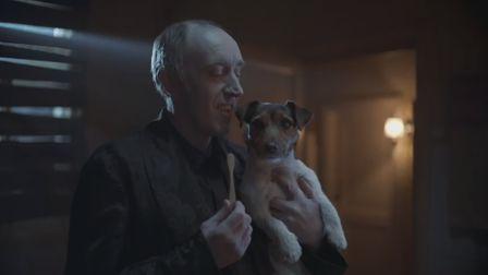 Pedigree's shaggy dog story