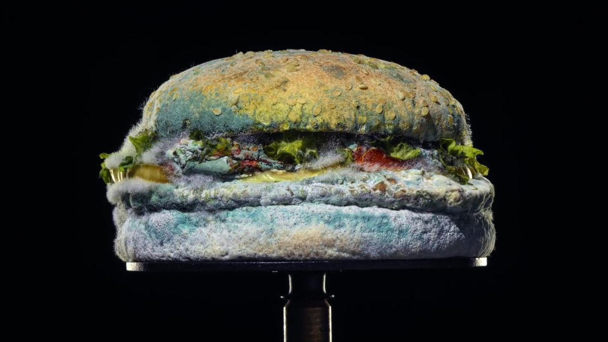 Amazing Burger King FOOD Montage limited edition