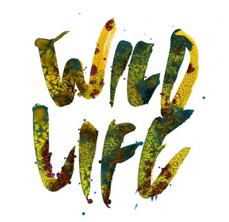 Stina-Persson-Wild-Life