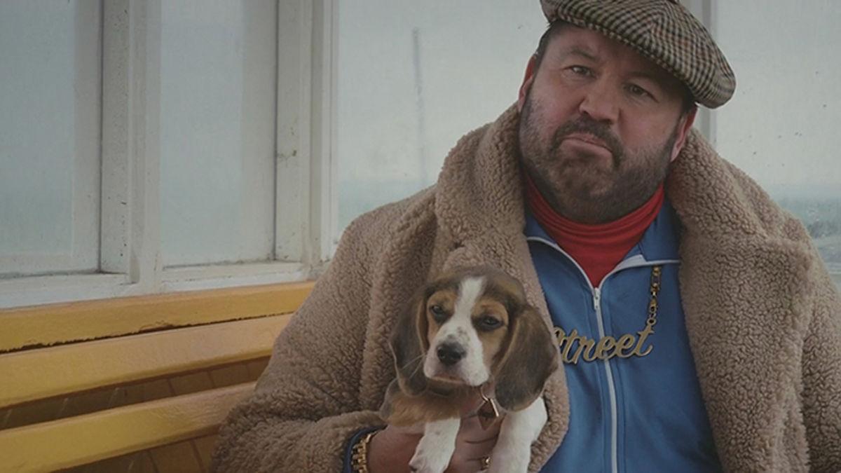 Beagle Life Insurance >> Meet Beagle And Lenny Street The New Stars Of Beagle