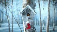 Aldi 'Favourite Christmas Things'