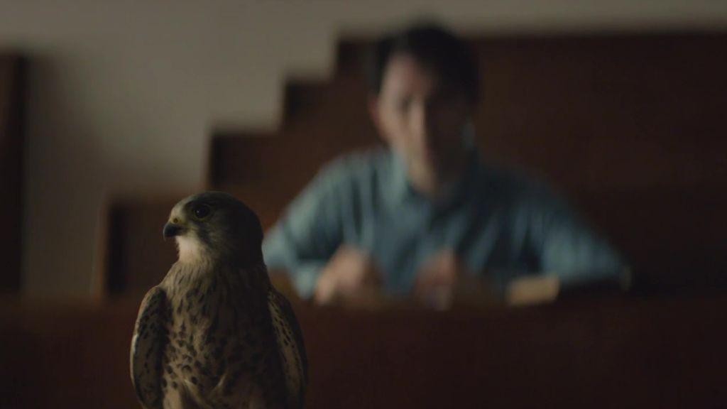 How Volvo's Birdman took flight